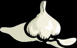 Garlic clipart cartoon