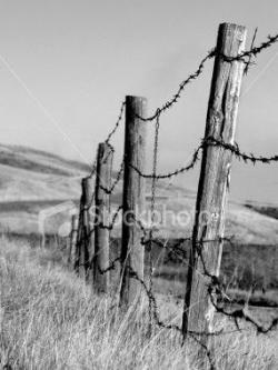 Ranch clipart wire fence