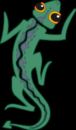 Iguana clipart amphibian
