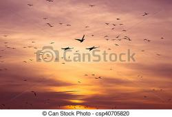 Geese Migration clipart spring