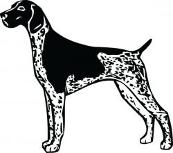Hound clipart pointer dog