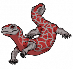 Gila Monster clipart