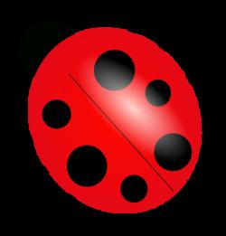 Glitch clipart ladybug