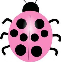 Mauve clipart ladybug