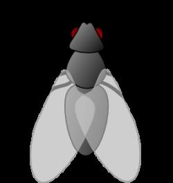 Glitch clipart mosquito