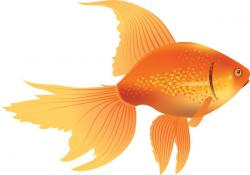 Line Art clipart golden fish