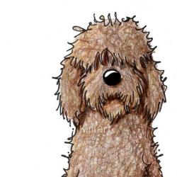 Goldendoodle clipart Goldendoodle Drawing