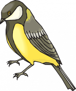 Finch clipart cartoon