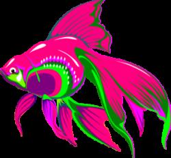 Fins clipart pink fish