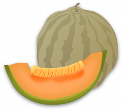Honey Dew Melon clipart animated
