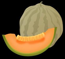 Honey Dew Melon clipart animated