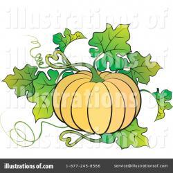 Gourd clipart pumpkin plant