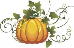 Gourd clipart pumpkin vine