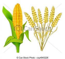 Grains clipart logo