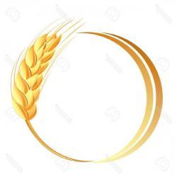Grain clipart