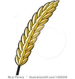 Oat clipart wheat plant