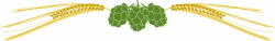 Barley clipart vector