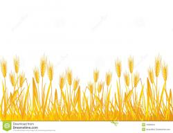 Grains clipart field wheat