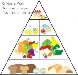 Grains clipart food pyramid
