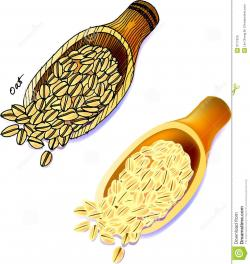 Oatmeal clipart grain product