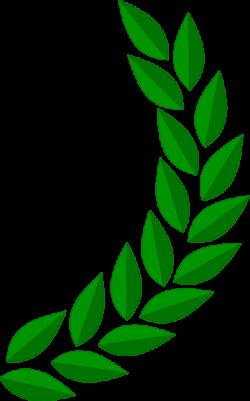 Barley clipart olive leaf