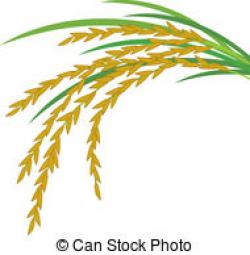 Grains clipart rice grain