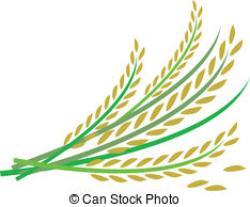 Straw clipart rice stalk