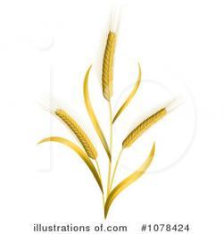 Grains clipart wheat grass