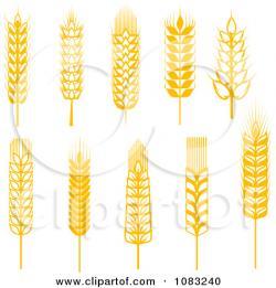 Grains clipart wheat leave