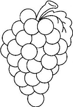 B&w clipart grapes