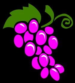 Grapes clipart