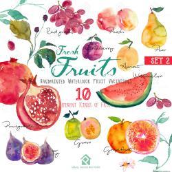 Guava clipart pakistani