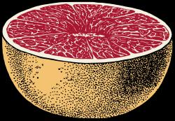 Grapefruit clipart big
