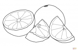 Grapefruit clipart black and white