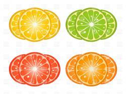 Lime clipart grapefruit slice