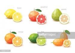 Citrus clipart orang