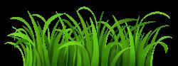 Wallpaper clipart grass