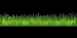 Pasture clipart background