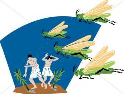 Locust clipart plague locust