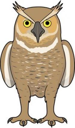 Barred Owl clipart animated