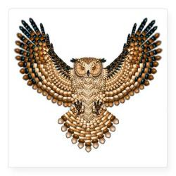 Barred Owl clipart wings