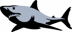 Hammerhead clipart bull shark