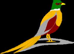 Pheasant clipart green