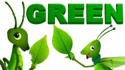 Green Day clipart green object