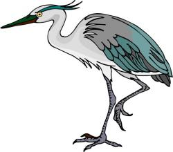 Great Blue Heron clipart crane