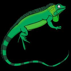 Head clipart iguana
