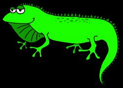 Face clipart iguana