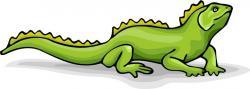 Newt clipart lizard