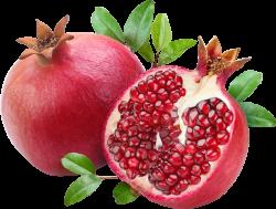 Pomegranate clipart transparent