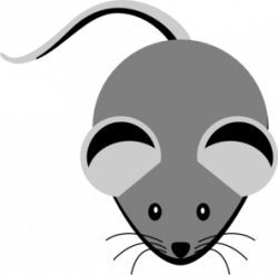 Whiskers clipart grey mouse